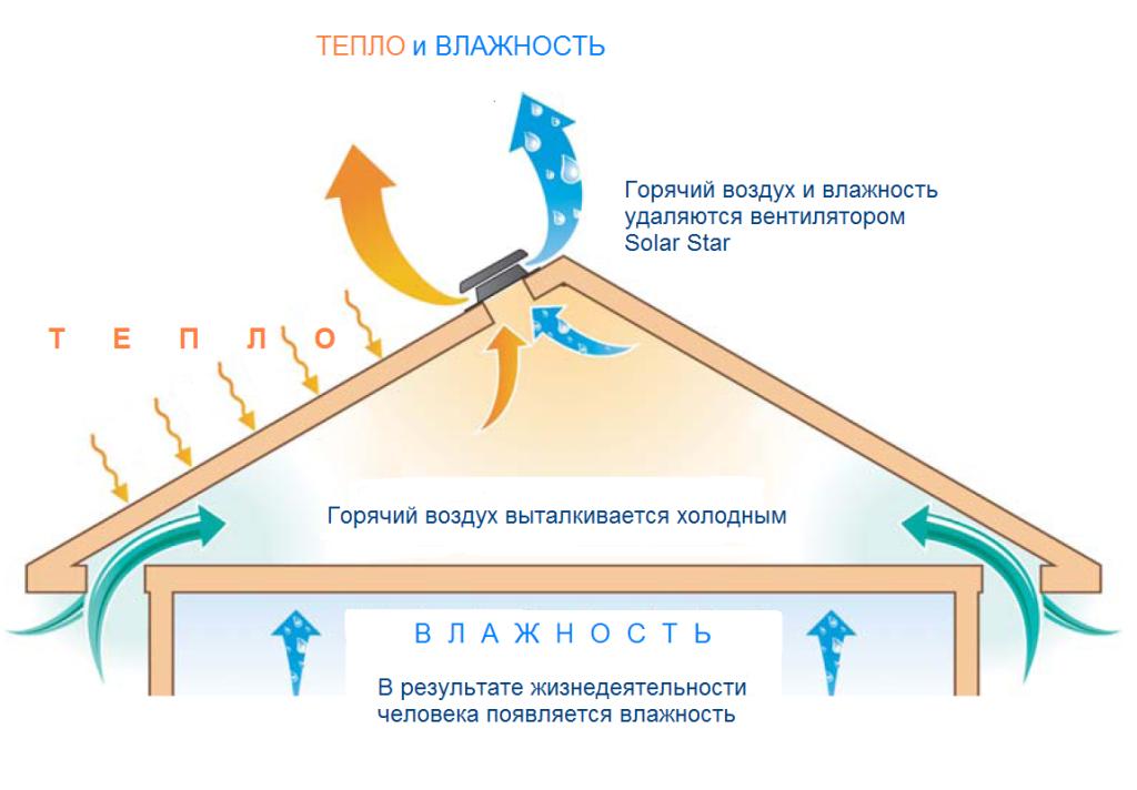 Solar-Star_shem-11_RU